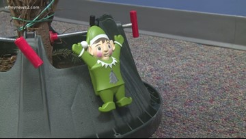 2 Wants To Know: The Evergreen Elf will keep your tree healthy all season long