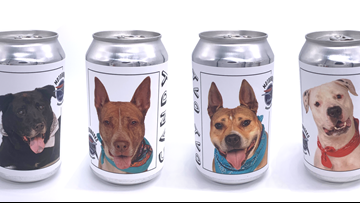 Bradenton brewery puts shelter dogs on beer cans to find them forever homes