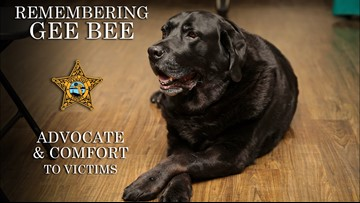 K-9 dies after years of service as a 'long-time victim advocate'