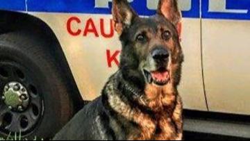 Police say goodbye to K-9 officer