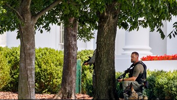 Secret Service: Person who tried to jump fence near White House in custody