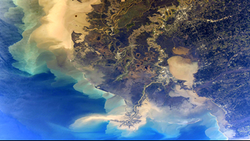 NASA astronaut shares stunning photo of Louisiana from space